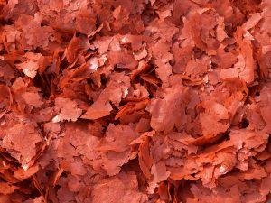 Kraft Colour Enhancing Mixed Omnivorous Fish Food Flakes